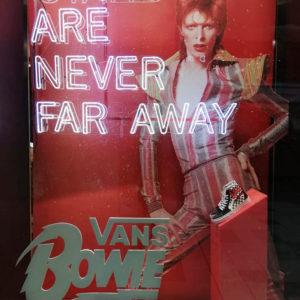 Vans - Bowie 2019